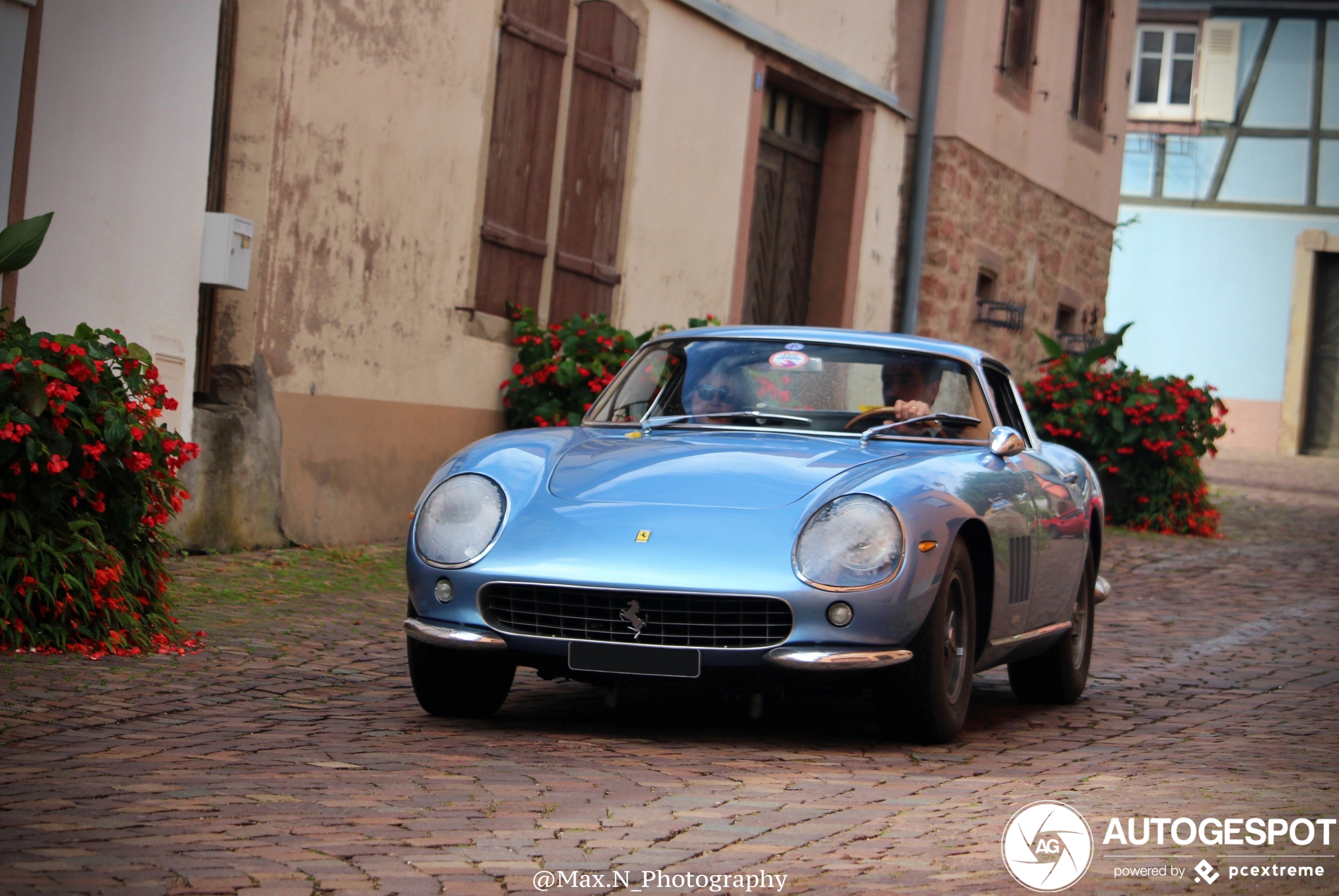 Ferrari275 GTB Shortnose