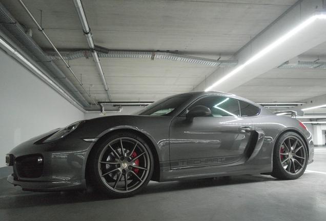 Porsche 981 Techart Cayman S