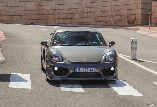 Porsche Techart Cayman S 2013
